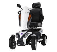 Large Scooters