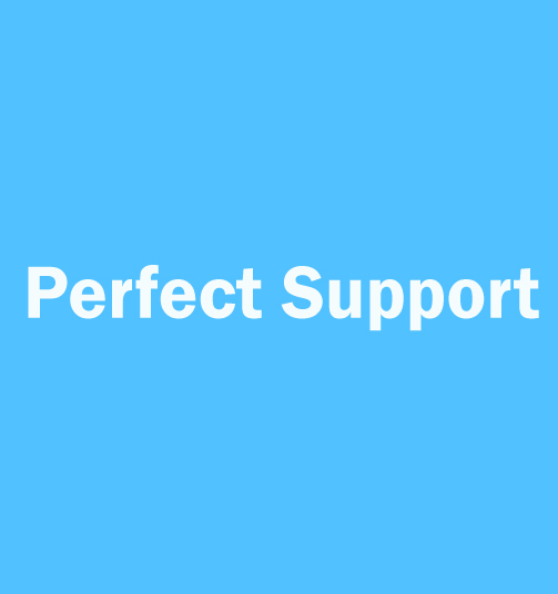 1525402369_perfect_support.jpg